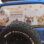 hotelbeta.pl-hotel-dla-zwierzat-poznan-auto-tyl